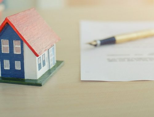 What are Land Registry Searches?